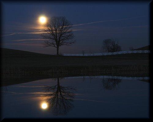 moonlight33796.jpg